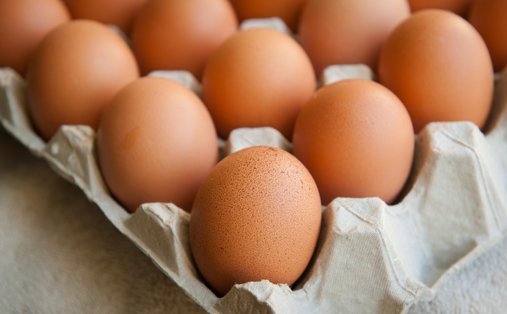 How Healthy is the Egg