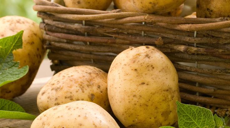 Reasons Why You Should Eat More Potatoes