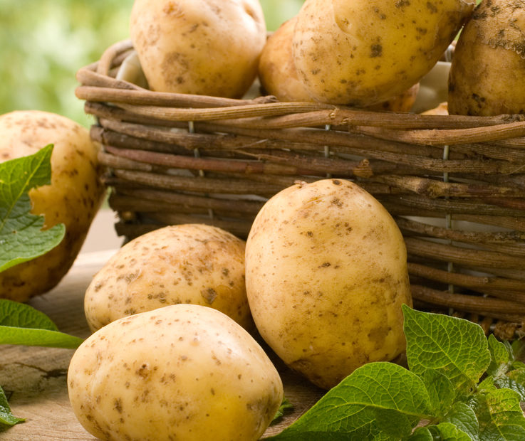 Reasons Why You Should Eat More Potatoes